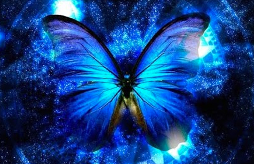 The Dance of the Cosmic Butterfly